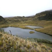 Wasser, Vielfalt und Leben: ja, Bergbau: nein. Cuenca hat gewählt.