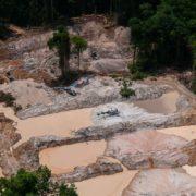 Goldsuche verseucht Flüsse, Böden und Lebensmittel