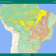 Amazonas brennt, Bolsonaro verspricht