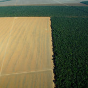 Alarmstufe Rot für Klima und Umwelt