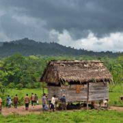 Hinweise auf Massaker an Indigenen